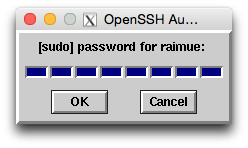 How to run rsync on remote host with sudo | raimue blog